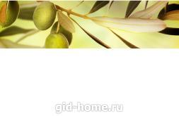 Фартук для кухни из МДФ Оливковая ветка 2  610 х 2440 х 3,0 мм