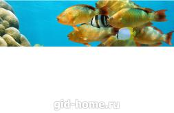 Фартук для кухни из МДФ Рыбки 1  610 х 2440 х 3,0 мм