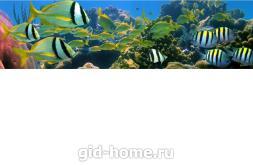 Фартук для кухни из МДФ Рыбки 2  610 х 2440 х 3,0 мм