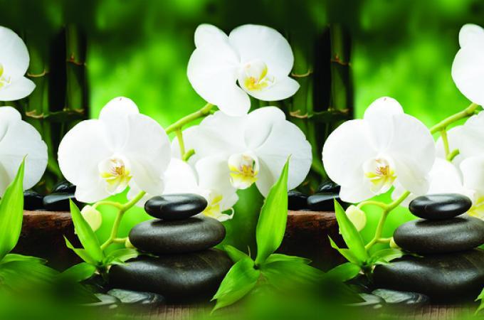 Кухонный фартук из АBS пластика Белая Орхидея