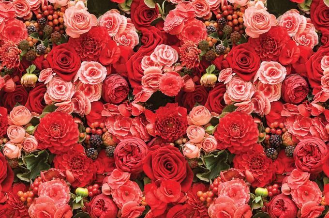 Кухонный фартук из АБС пластика Розы