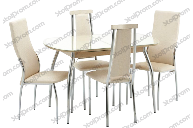 Обеденная группа стол и стулья № 1