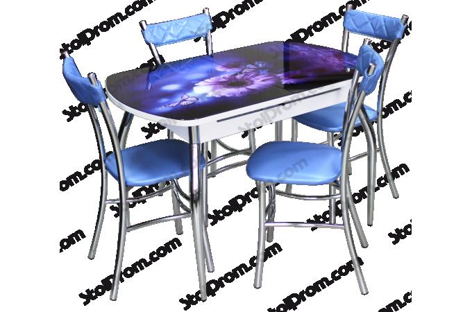 Обеденная группа стол и стулья  № 6